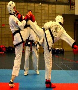 karate regio barendrecht