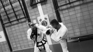 zelfverdedigingsportbarendrecht