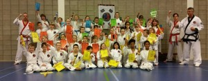 tang soo do barendrecht