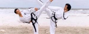 vechtsport barendrecht